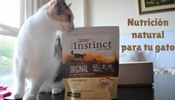 True Instinct: Nutrición natural para tu gato-  blog sobre gatos- La Guarida de mis gatos